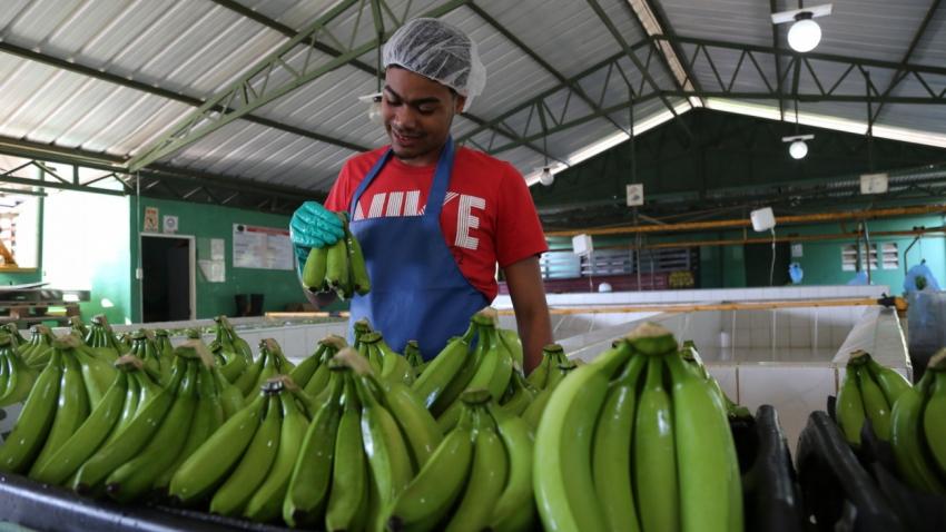Presidente Medina prioriza a la agroindustria e industria nacional en las compras públicas